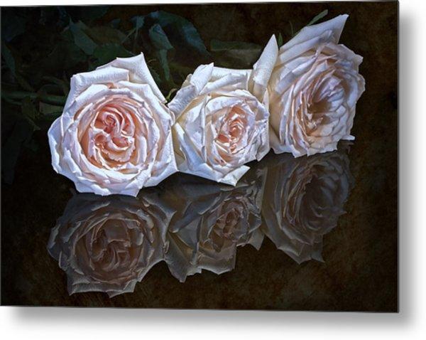 Three Roses Still Life Metal Print