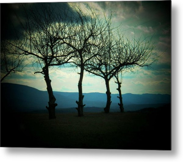Three Trees Metal Print by Joyce Kimble Smith