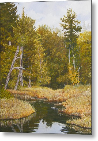Three Turtles Lake Conestee Metal Print