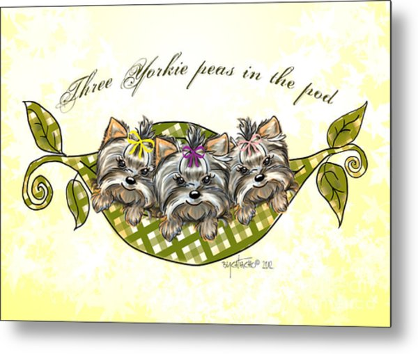 Three Yorkie Peas In The Pod Metal Print