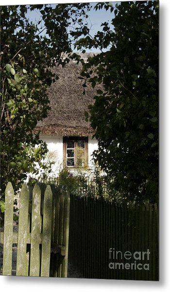 Through The Bushes To The Window Metal Print