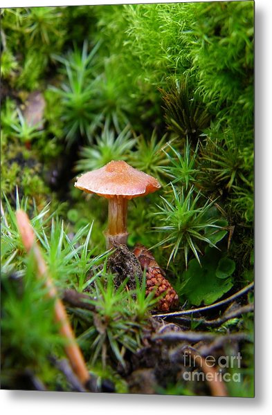 Thumbelina's Forest Metal Print