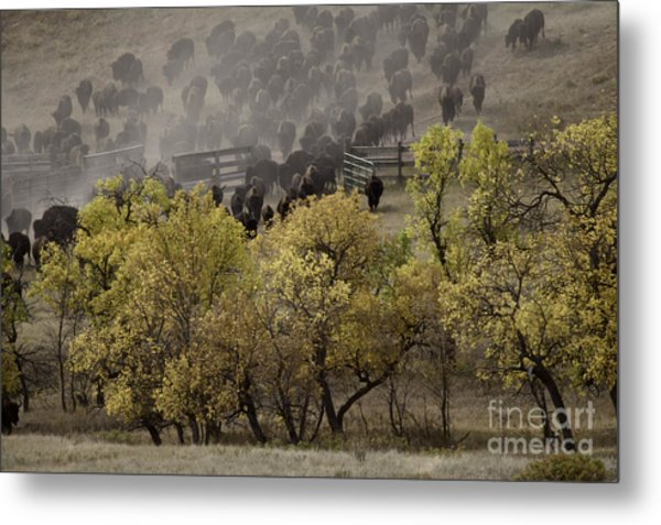 Thunder In The Black Hills Metal Print