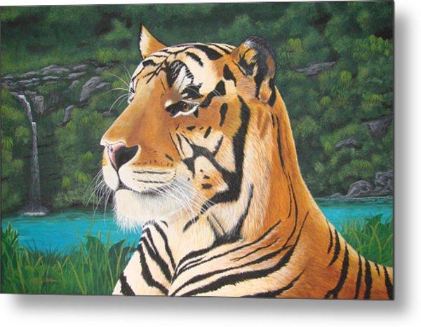 Tiger Falls Metal Print by Jeffrey Oldham