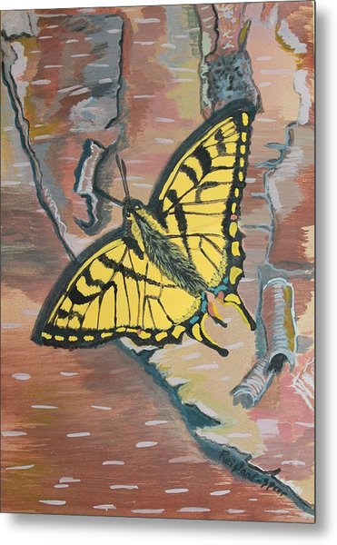 Tiger Swallowtail Metal Print by Amy Reisland-Speer