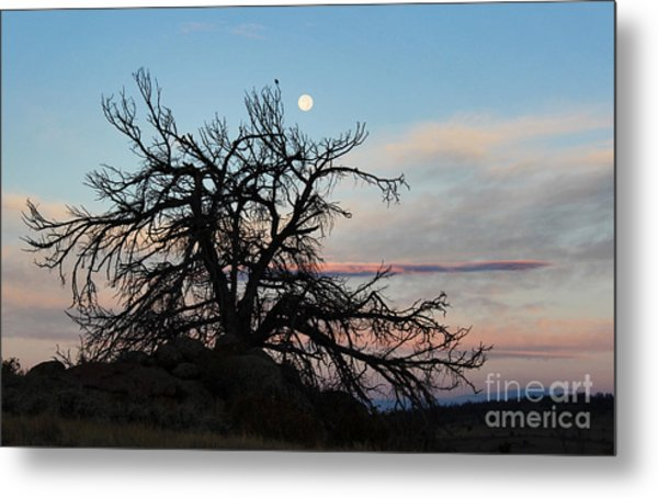 To The Tune Of A Blue Moon Metal Print by Wesley Hahn