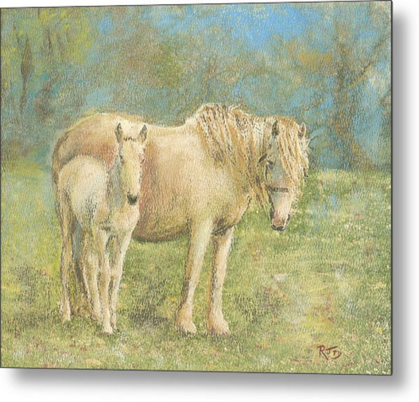 Together New Forest Pony And Foal Metal Print