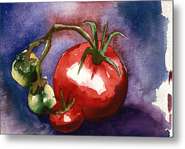 Tomatoes Metal Print by Eunice Olson