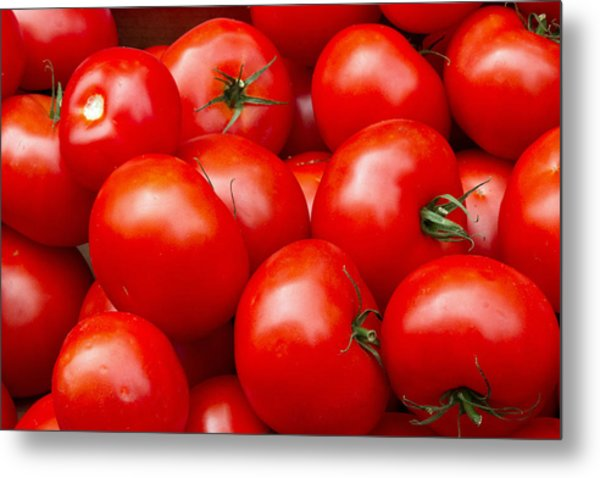 Tomatos Metal Print