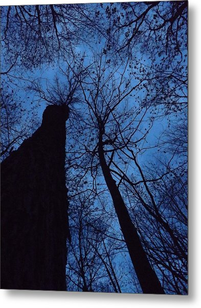 Towering Into The Night Metal Print