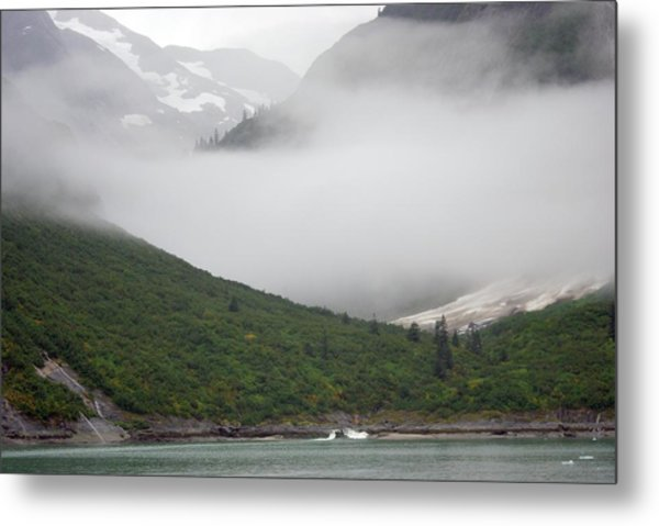 Tracy Arm Inlet Metal Print