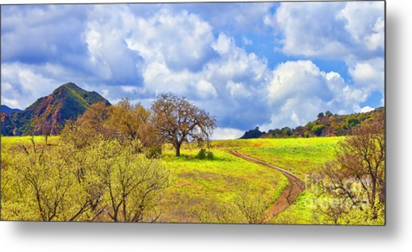 Trail To Nowhere Metal Print