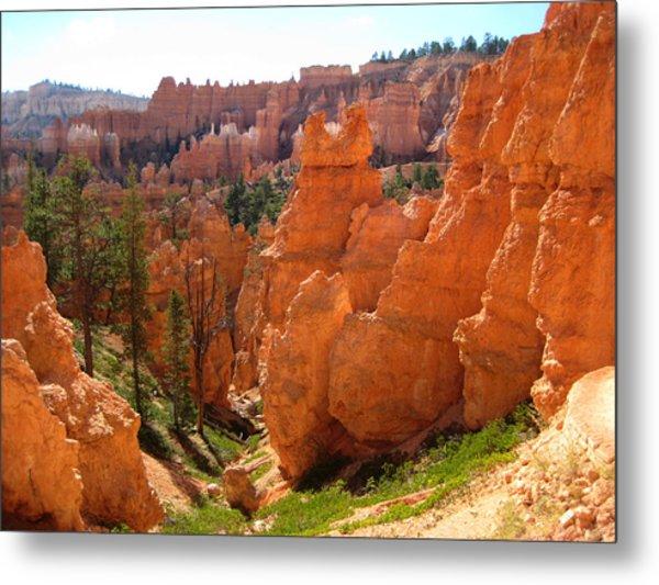 Trail View Bryce Canyon Metal Print