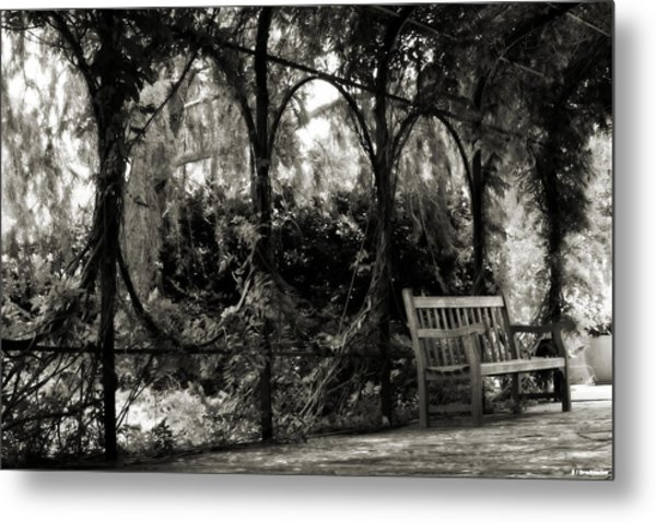 Tranquil Leaf Covered Walkway In Black And White Metal Print