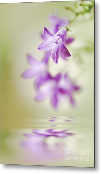 Tranquil Spring Metal Print by Jacky Parker