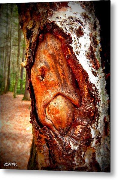 Tree Face Metal Print by Vix Views