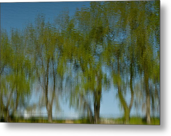 Tree Line Reflections Metal Print