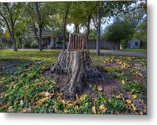 Tree Stump Chair Metal Print By Christopher Smith