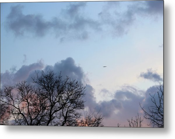 Trees On The Background Of A Cloudy Sky At Twilight Metal Print by Gal Ashkenazi