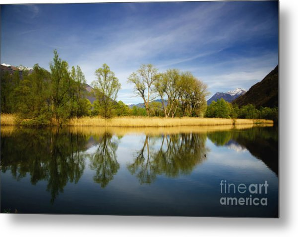 Trees Reflections On The Lake Metal Print