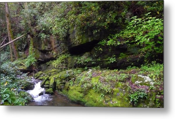 Trickle Of Green Metal Print by Michael Carrothers
