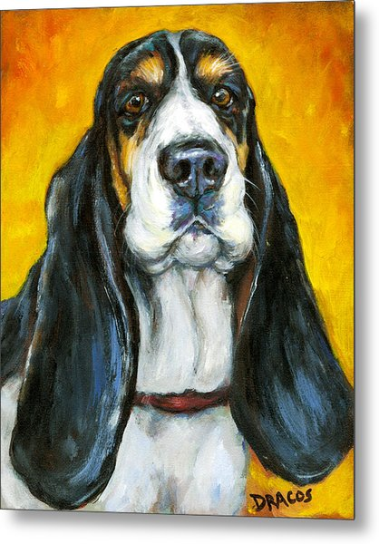 Tricolored Basset Hound On Gold Metal Print by Dottie Dracos