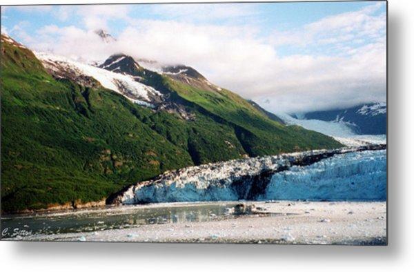 Trip To Glacier Bay Metal Print