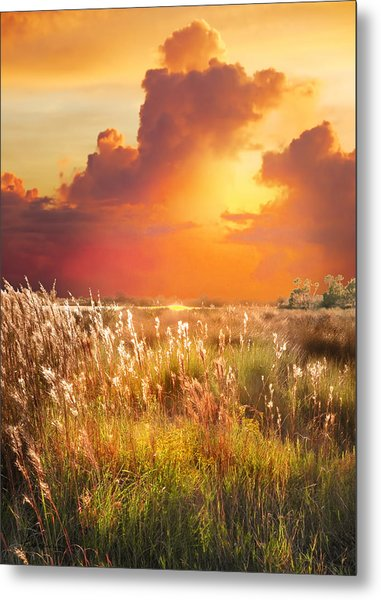 Tropical Savannah Metal Print