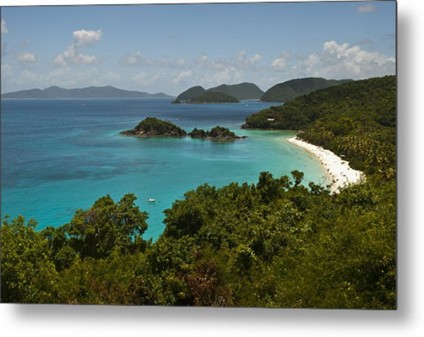 Trunk Bay 1 Metal Print