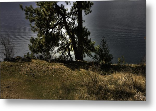 Tubbs Hill On Lake Cd'a Metal Print by Grover Woessner