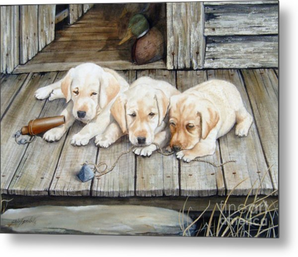Tuckered Out Trio  Sold  Prints Available Metal Print