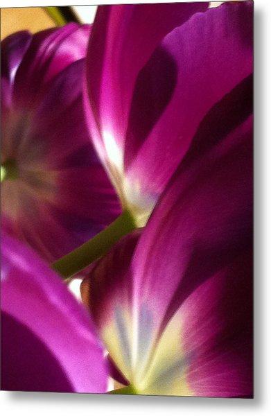 Tulip Weave Metal Print