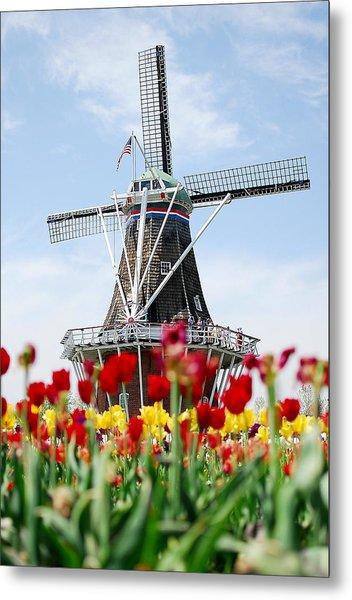 Tulips Windmill Metal Print