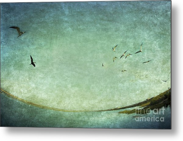 Turquoise World Metal Print