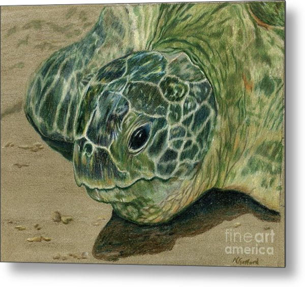 Turtle Beach Metal Print