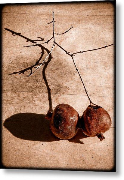 Albuquerque, New Mexico - Twin Pomegranates Metal Print