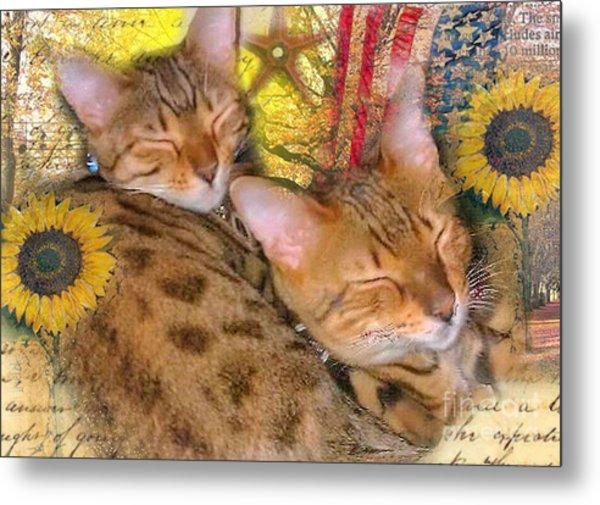 Two Kitties Sitting In A Tree Metal Print