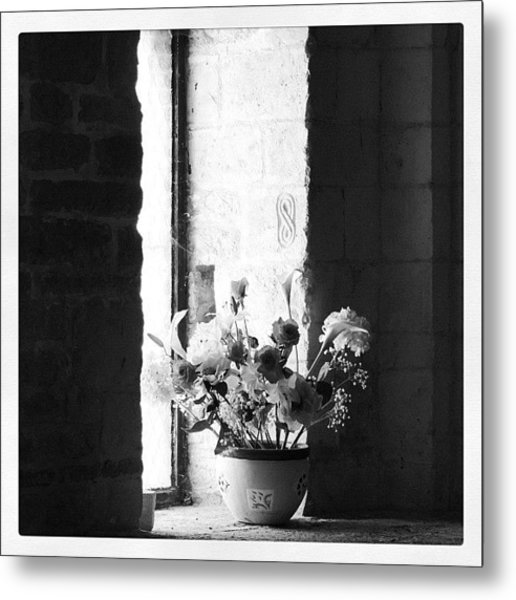 Uncolored Flowers Metal Print