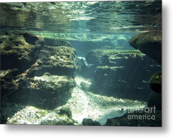 Underwater Stream In Central Florida Metal Print by Christopher Purcell