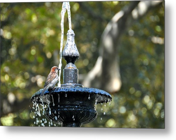 Van Vorst Fountain Metal Print by JAMART Photography