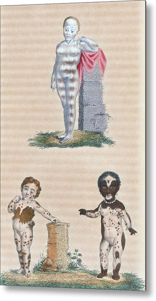 Varieties In The Human Species, Artwork Metal Print by General Research Division New York Public Library