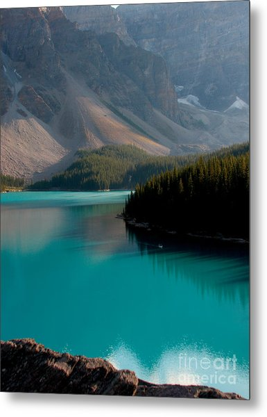 Vertical Metal Print