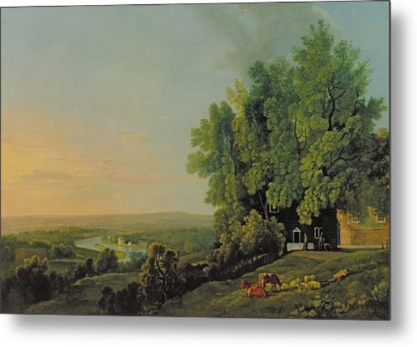 View From Richmond Metal Print