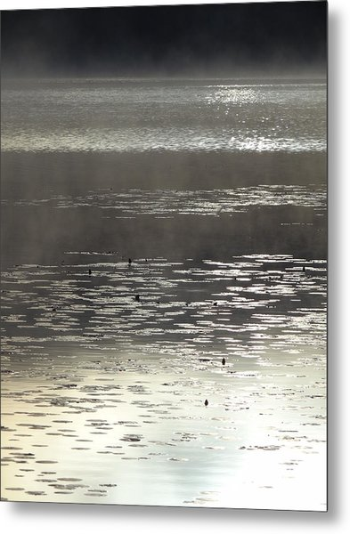 View3 Metal Print by Wim Haverkamp