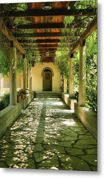 Vine Covered Walkway Photograph By Steven Ainsworth