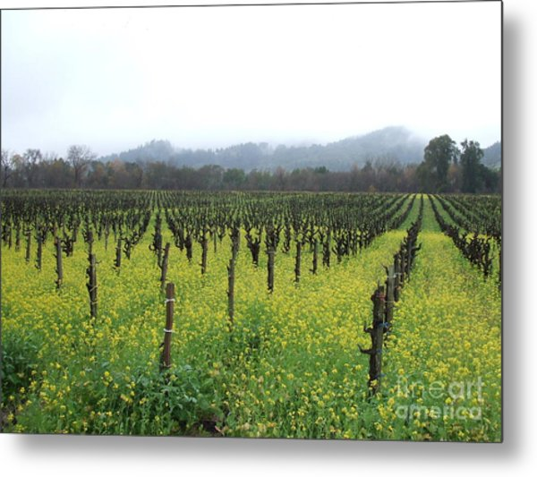 Vines Of Our Times Metal Print
