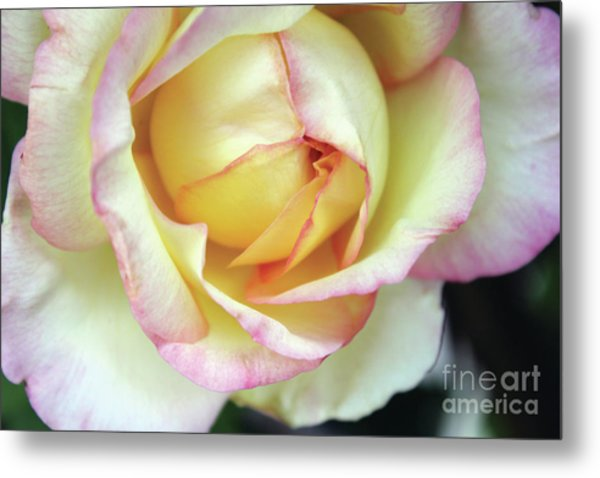 Virgin Beauty Metal Print