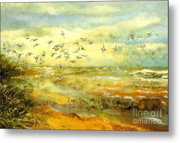 Wadden Sea Metal Print by Anne Weirich