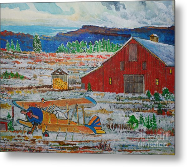 Waiting For Better Weather Metal Print by Donald McGibbon