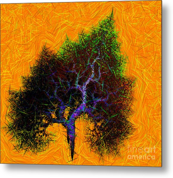 Was A Crooked Tree  Grunge Art Metal Print